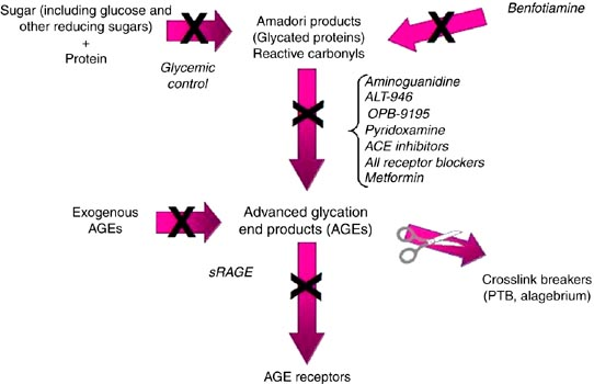 anti glycation pathway