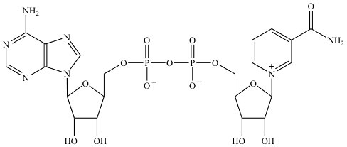 NAD chemical structure