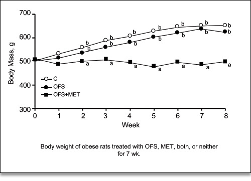 Comparison of the weight loss of obese rats