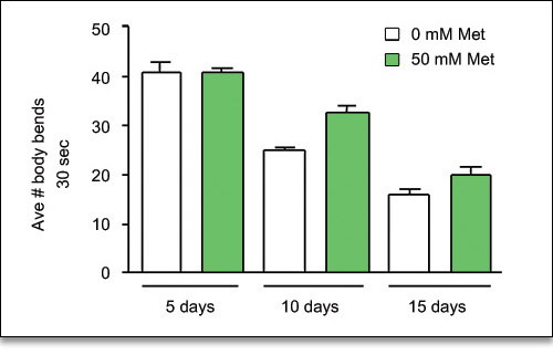Comparison of activity levels of controls and Metformin-treated nematodes