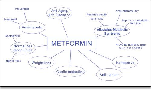 Metformin's range of beneficial effects