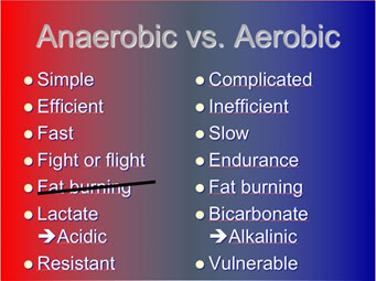 A comparison between the anaerobic and aerobic energy production systems
